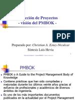 2005_PMBOK-resumen (2).ppt