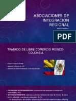 Presentacion Asociaciones de Integracion Regional