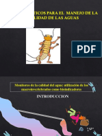 Macroinvertebrados (3) (1)