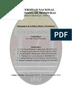 Bioquímica de la Saliva, Diente y Periodonto