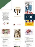 folleto cefalea tensional y mgraña.pdf