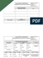 Formato Evaluación Condiciones Disergonómicas