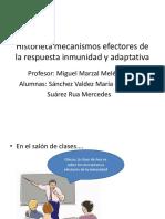 Historieta Mecanismos Efectores de La Respuesta Inmunidad y