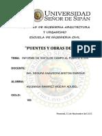 Informe de Puentes Visita a Obra Adubel