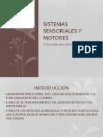 Sistemas Sensoriales y Motores