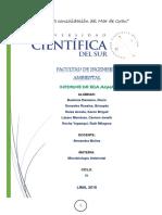 Informe de Microbiologia Eca Agua.