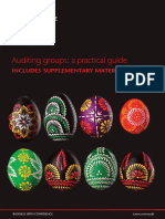 Auditing groups a practical guide INCLUDING supplementary material.pdf