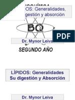 Lipo Dos