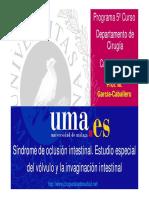 002_Oclusión intestinal.pdf