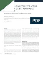 Microcirugía Reconstructiva en Trauma de Extremidades Inferiores