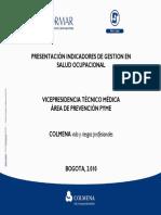 Presentacion_Indicadores_de_Gestion_SO.pdf