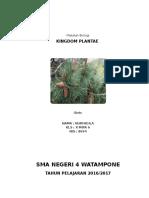 Makalah Kingdom Plantae NURFADILA
