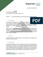 Informe Ricardo Ramirez