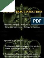 UTI lecture 2013.pdf