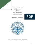 Relazione Pendolo Semplice (Fisica1 PoliTo 2013-2014)