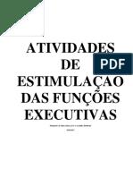 Funções Executivas 2 (1)