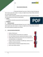208442425-PACKER-DE-PRODUCCION-original-doc.doc