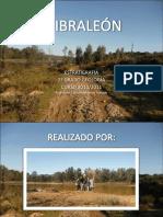 ESTRATI GIBRALEON.pdf