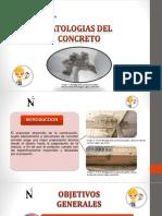 Patologias Del Concreto