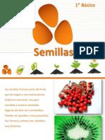 las semillas 1°B