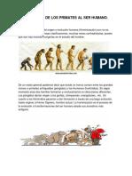 La Evolucion de Los Primates Al Ser Humano