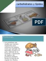 proteínas , lipidos,carbohidratos.pptx
