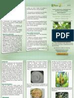 PLEGABLE DIVULGATIVO Nb0 1-2011 -MOKO.pdf