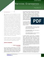 nervios-craneanos-canino.pdf