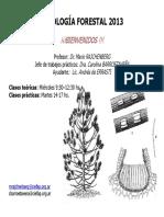 foresteria patologias