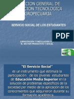 El Servicio Social 2017