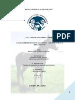 Imprimir Mg en Equinos