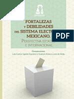 Ugalde, Analisi Del Sistema Electoral Mexicano