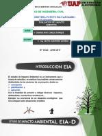 PONENCIA EIA.pptx