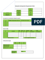 Planilla de Evaluación Al Calor Ocupacional Xime
