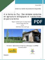 rapport valorisation blé