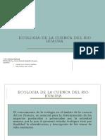 Ecologia de La Cuenca Del Rio Huaura