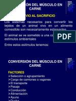 3.-Manejo Previo Al Sacrificio