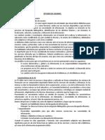 Estudio de Usuario APUNTE FINAL.docx