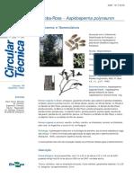 aspidosperma polinerum