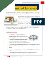 Principios Basicos Fundamentales Del Control Interno (1) g2