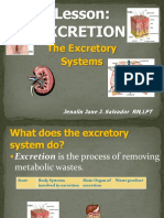 Excretion Ppt
