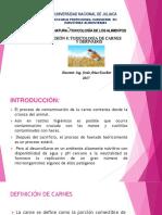 Sesion 8 Toxicología Alim. - Copia (1)