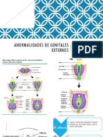 genitales-externos-ginecologia.pptx