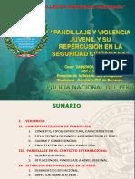 7. Pandillaje y Violencia Juvenil y Su Repercusion en La Seguridad Ciudadana
