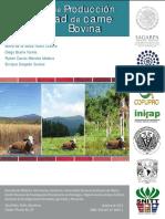 18. Sistemas de Producción y Calidad de Carne Bovina.pdf