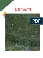 TEH_for_BACA.pdf