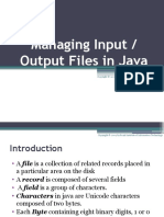 Input Output Files