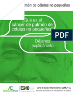 ES Cancer de Pulmon de Celulas No Pequenas Guia Para Pacientes
