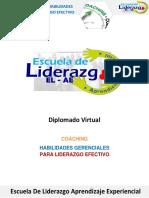 Informacion Diplomado HGLE