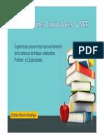 Adaptaciones Curriculares (Significativas y No Significativas)